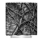 Tree Hugging Shower Curtain