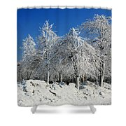 Tree Ice Shower Curtain