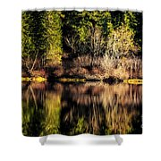 Tree Impressions Shower Curtain