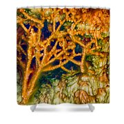 Tree In A Park Hot Springs Shower Curtain