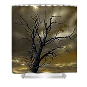 Tree In A Storm Shower Curtain