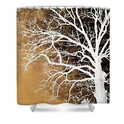 Tree In Abstract Shower Curtain
