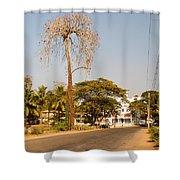 Tree In Goa Shower Curtain