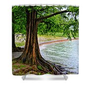 Tree In Paradise Shower Curtain