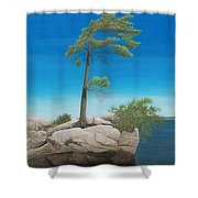 Tree In Rock Shower Curtain