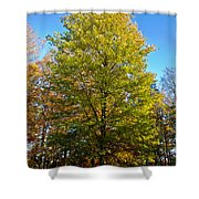 Tree In The Cemetery Shower Curtain