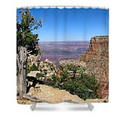 Tree In The Grand Canyon Shower Curtain