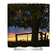 Tree In The Sunset Shower Curtain