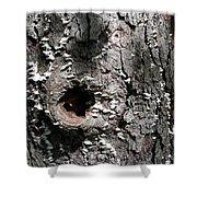 Tree Lichen Hole Shower Curtain