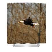 Tree Line Flight Shower Curtain