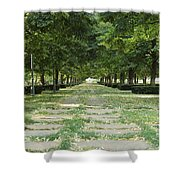 Tree Lined Shower Curtain