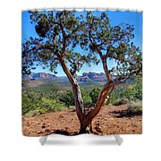 Tree-mendous Sight Shower Curtain