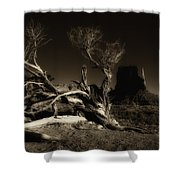 Tree Monument Valley Shower Curtain