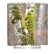 Tree Moss Abstract Shower Curtain