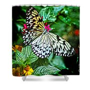 Tree Nymph 2 Shower Curtain