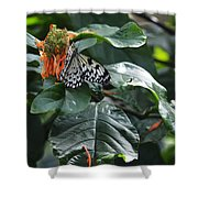 Tree Nymph On Blossom Shower Curtain