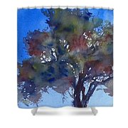 Tree Of Color Shower Curtain