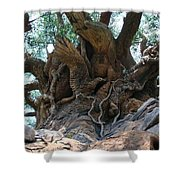 Tree Of Life Closeup Shower Curtain