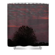 Tree Of Life Under A Colorful Sky Shower Curtain