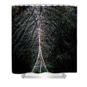 Tree Of Light Shower Curtain