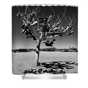 Tree Of Lost Soles 2 Shower Curtain