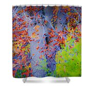 Tree Of Many Colors Shower Curtain