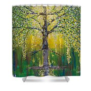 Tree Of Reflection Shower Curtain
