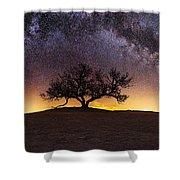 Tree Of Wisdom Shower Curtain