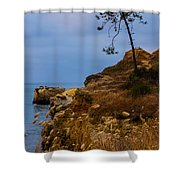 Tree On A Cliff II Shower Curtain