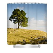Tree On A Hill Shower Curtain