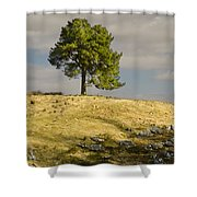 Tree On A Hill Vertical Shower Curtain