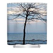 Tree On Beach Shower Curtain