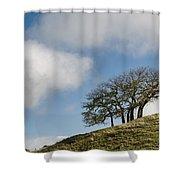 Tree On Hillside Shower Curtain