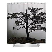 Tree On The Blue Ridge Parkway Shower Curtain