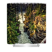 Tree On The Edge Of A Cliff Shower Curtain