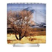 Tree On The Farm Shower Curtain