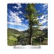 tree over Cordevole valley Shower Curtain