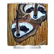 Tree Raccoons Shower Curtain