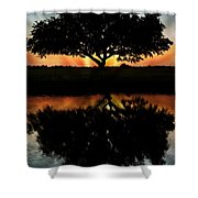 Tree Reflection Shower Curtain