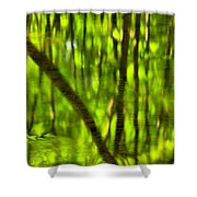 Tree Reflections Shower Curtain by Adam Jewell