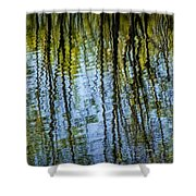 Tree Reflections On A Pond In West Michigan Shower Curtain
