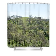 Tree Scape Shower Curtain