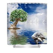 Tree Seagull And Sea Shower Curtain