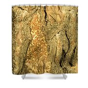 Tree Self Reflections In Bark Shower Curtain