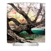 Tree Series 01 Shower Curtain