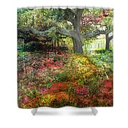 Tree Series 47 Shower Curtain