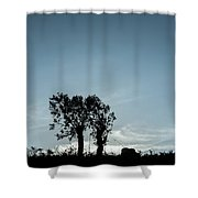 Tree Silhouette II Shower Curtain