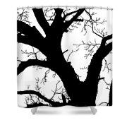 Tree Silhouette  Shower Curtain