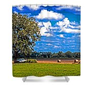 Tree Stands Alone- Vibrant Colors Shower Curtain