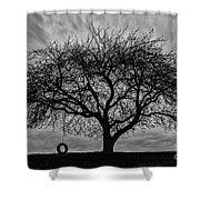 Tree Swing Shower Curtain